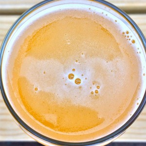 The Bitter Truth About Sour, Funky Beer
