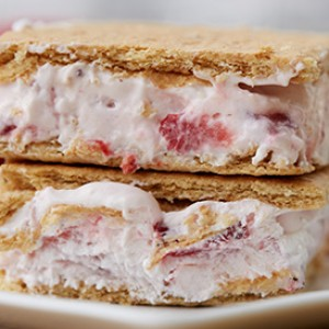 Summer's Must-Try Treat: Frozen Yogurt Sandwiches