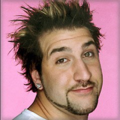 Joey Fatone's Ridiculous New Gig