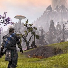 The 'Elder Scrolls Online' Will Play Even Better Soon