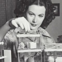 How Inventive 'Genius' Hedy Lamarr Became a Hollywood Tragedy