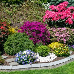 Landscaping Tricks That Can Save You Money