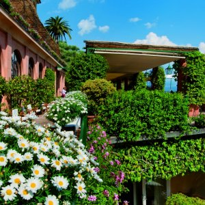 6 Destinations With Beautiful Flower-Covered Facades