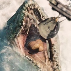The Fan Theory That Is Turning Heads In 'Jurassic World'