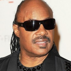 Ted Nugent Slams Stevie Wonder