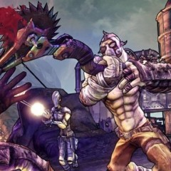 The Joys Of Self-Immolation & Other Facts About Borderlands 2
