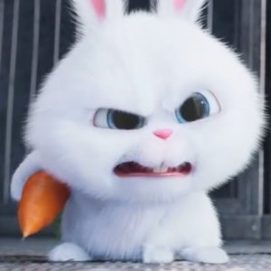 What Adults Only Notice in 'The Secret Life of Pets'