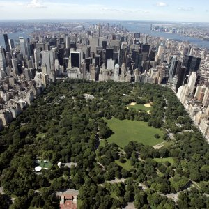 Don't Step One Foot in Central Park Until You Read This