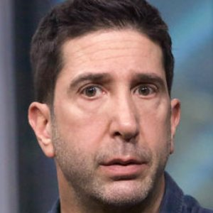 We Finally Understand Why David Schwimmer Has Disappeared